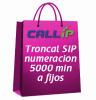 Plan troncal SIP asterisk